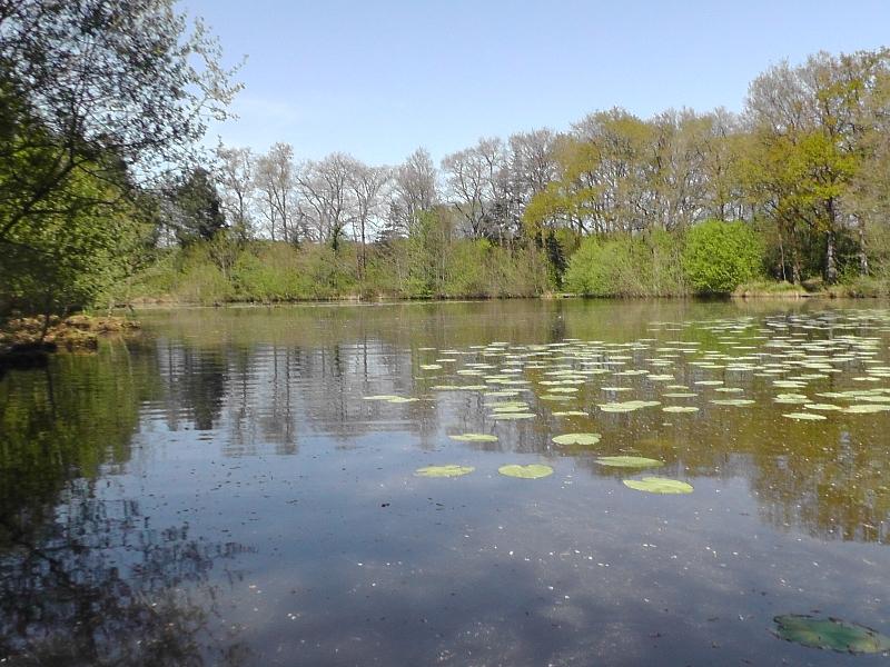 lake-2014-011