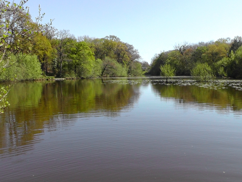 lake-2014-047