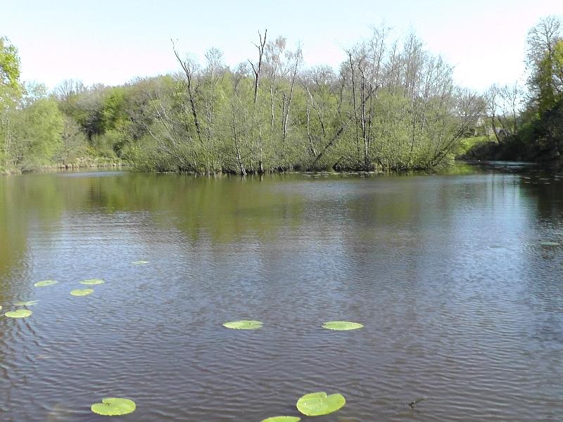 lake-2014-056